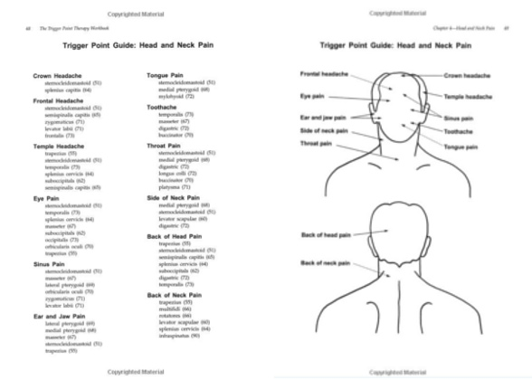 Pin On Anatomical Associations And Pain Manual Guide